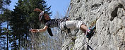 Rock Climbing - Things to do in Interlaken