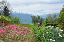 Holiday Apartments Switzerland