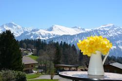 Beatenberg Schweiz Ferienwohnung
