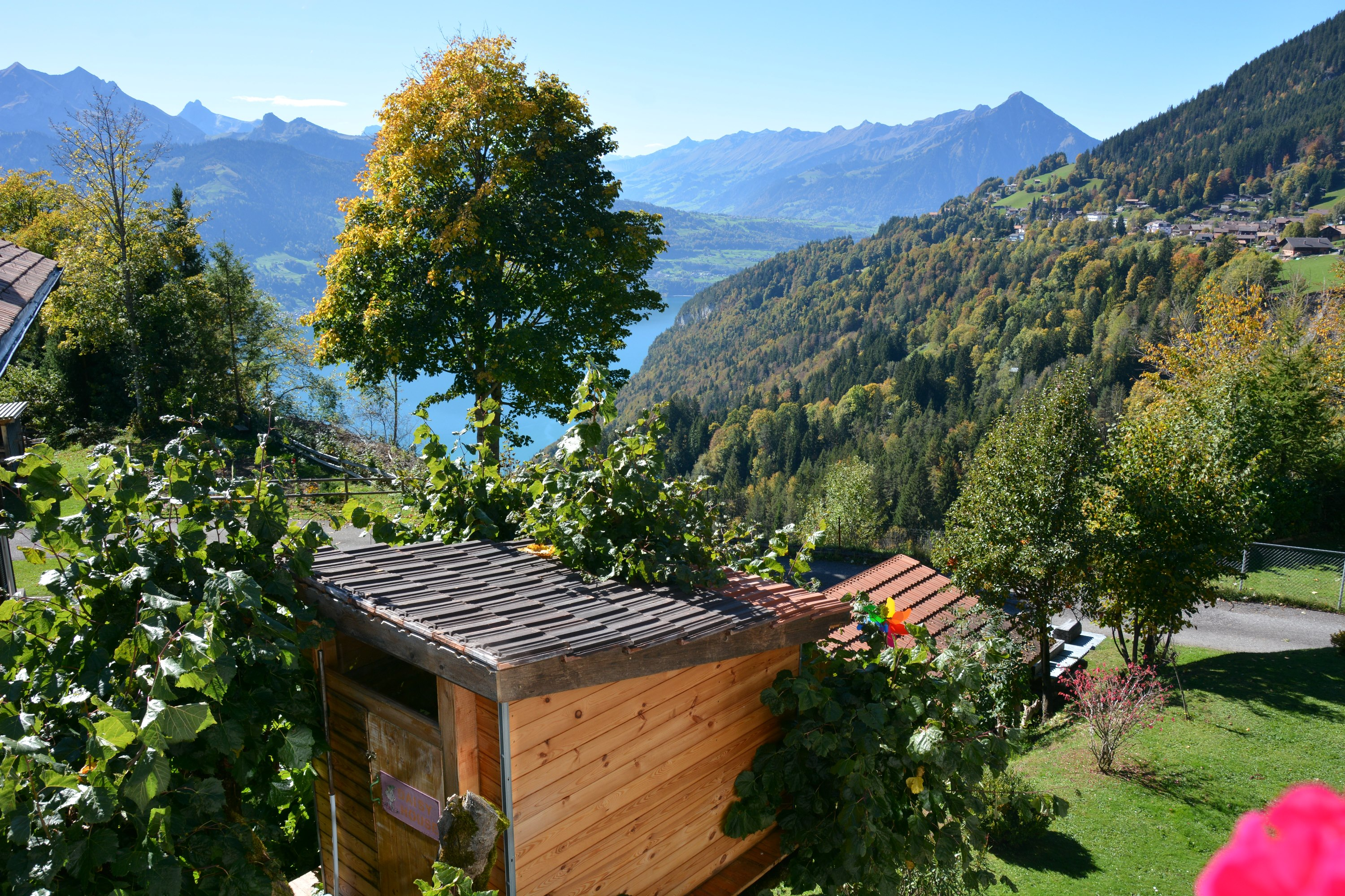 Treehouse Beatenberg Switzerland