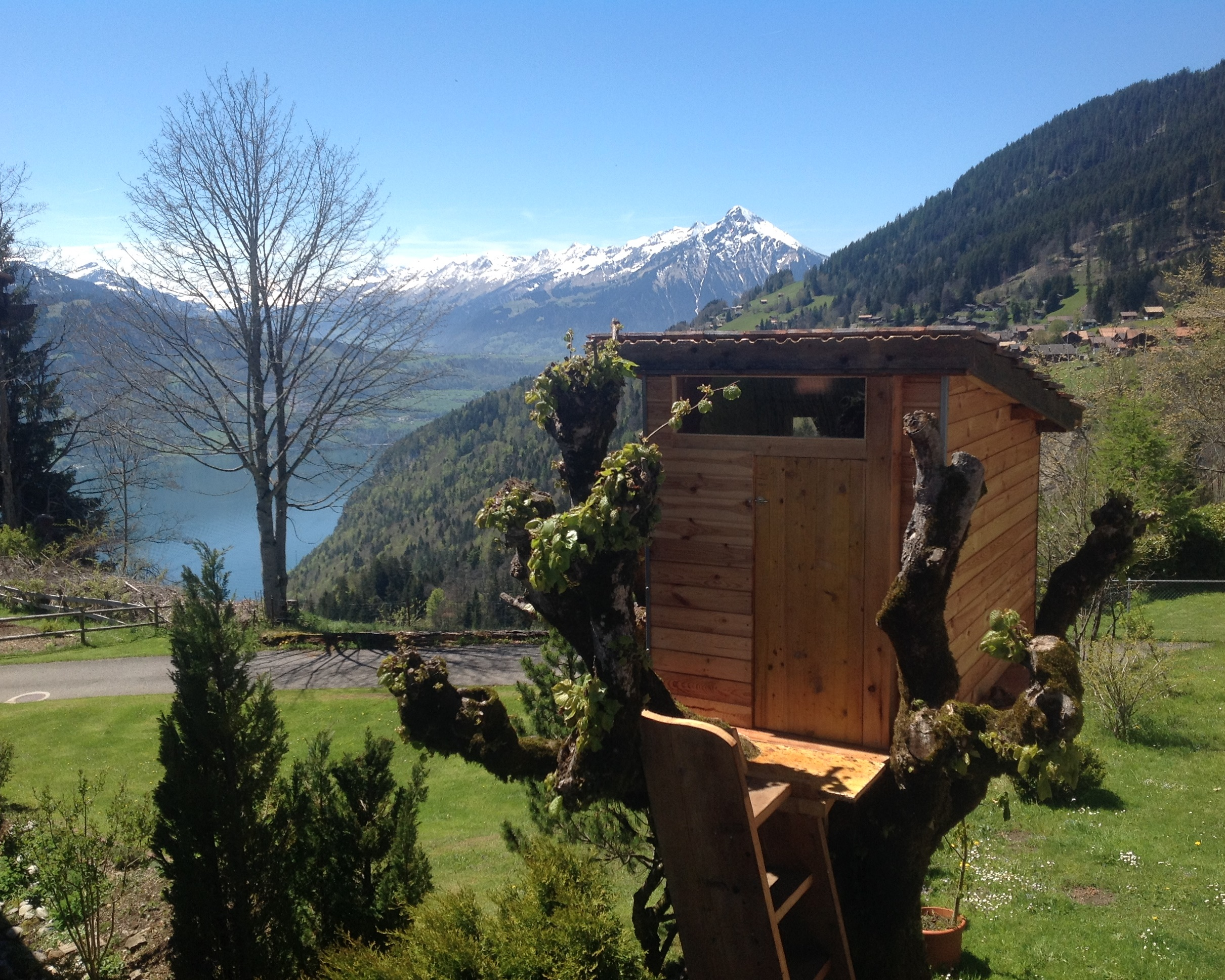 Treehouse Switzerland Beatenberg