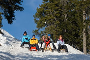 Sledding - Beatenberg Activities for Families in Winter