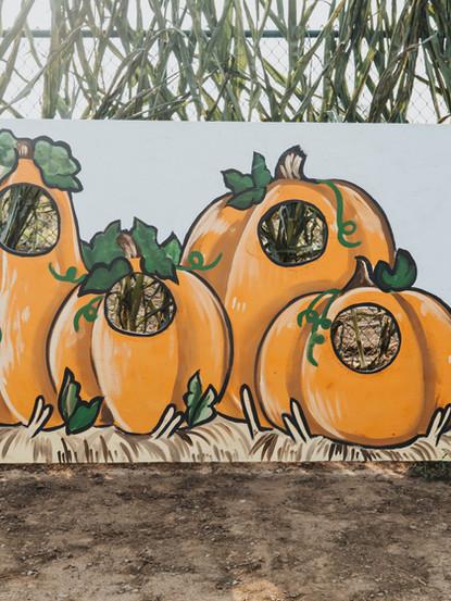 GS Pumpkin Patch 2020 FINAL_-87.jpg