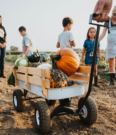 GS Pumpkin Patch 2020 FINAL_-180.jpg
