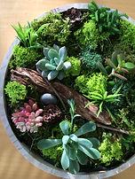 tableau vegetal 1.jpg