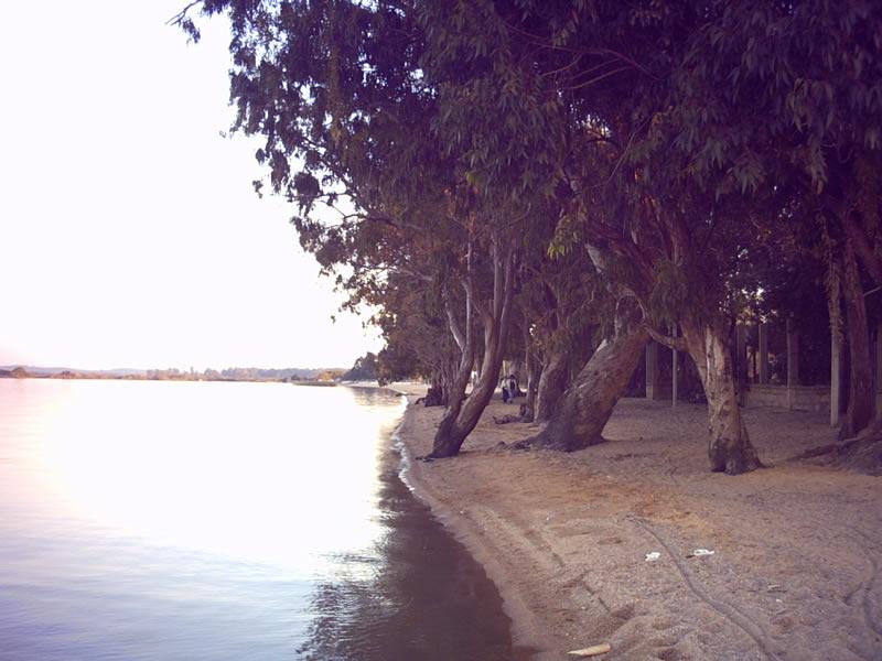 Praia_voarthur1
