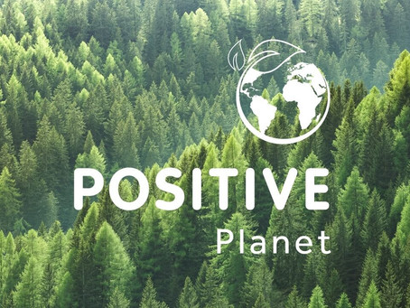 Business Champions: POSITIVE