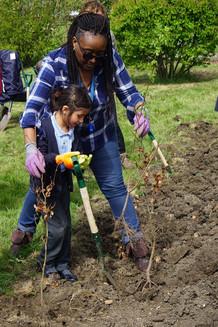 Merton, Air Quality, Tree Planting, Scho