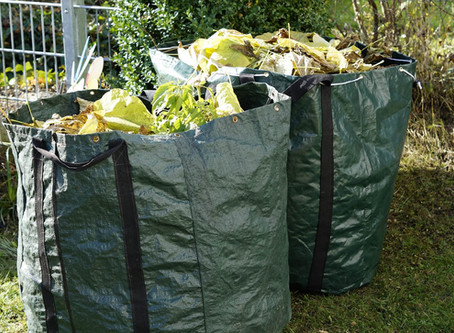 How to... go green with your garden waste