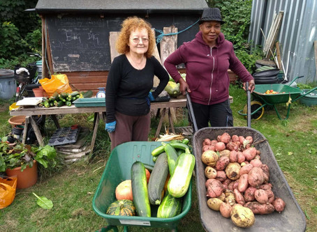 Sustainable Food Places comes to Merton