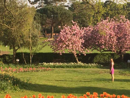 Reap the wellbeing benefits of green spaces this spring