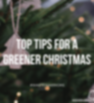 Green Christmas (1) (1).png