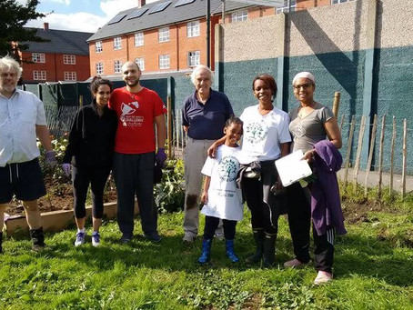 It's a Win for Mitcham Community Orchard & Gardens!
