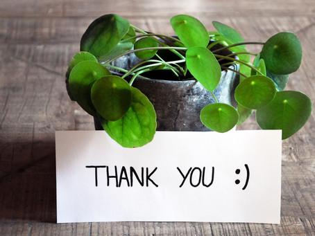 Sustainable Merton received generous donation from Indigo Planning