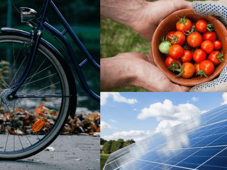Merton Council's Climate Action Plan: An update