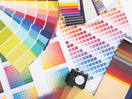 Business Champions: Colouration