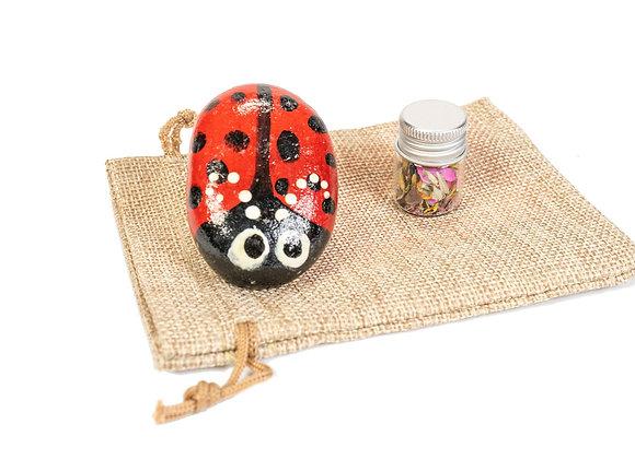 Little Ladybug Pal