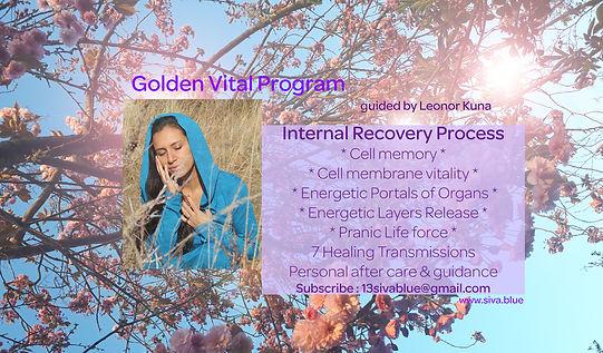 Golden Vital Program.jpg