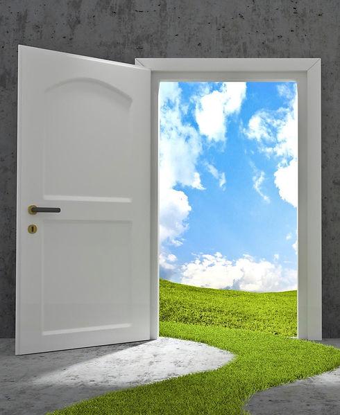 barb door opening.jpg