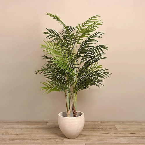 Palm Tree - Medium