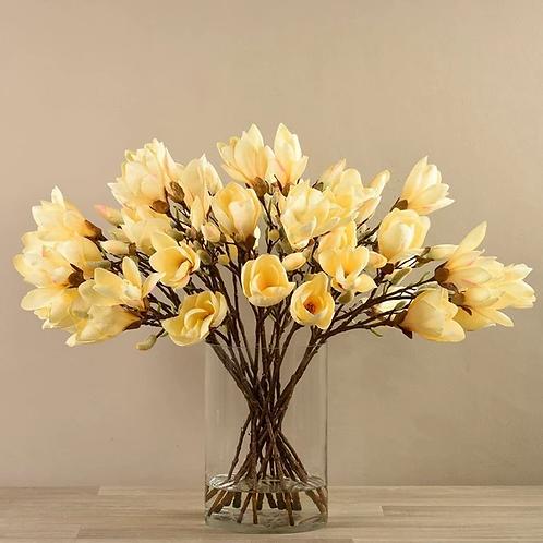 Magnolia in Glass Vase