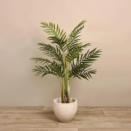 Palm Tree - Small