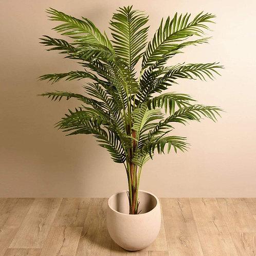 Paradize Palm - Large