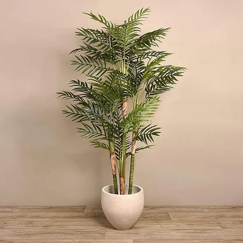 Palm Tree - Large