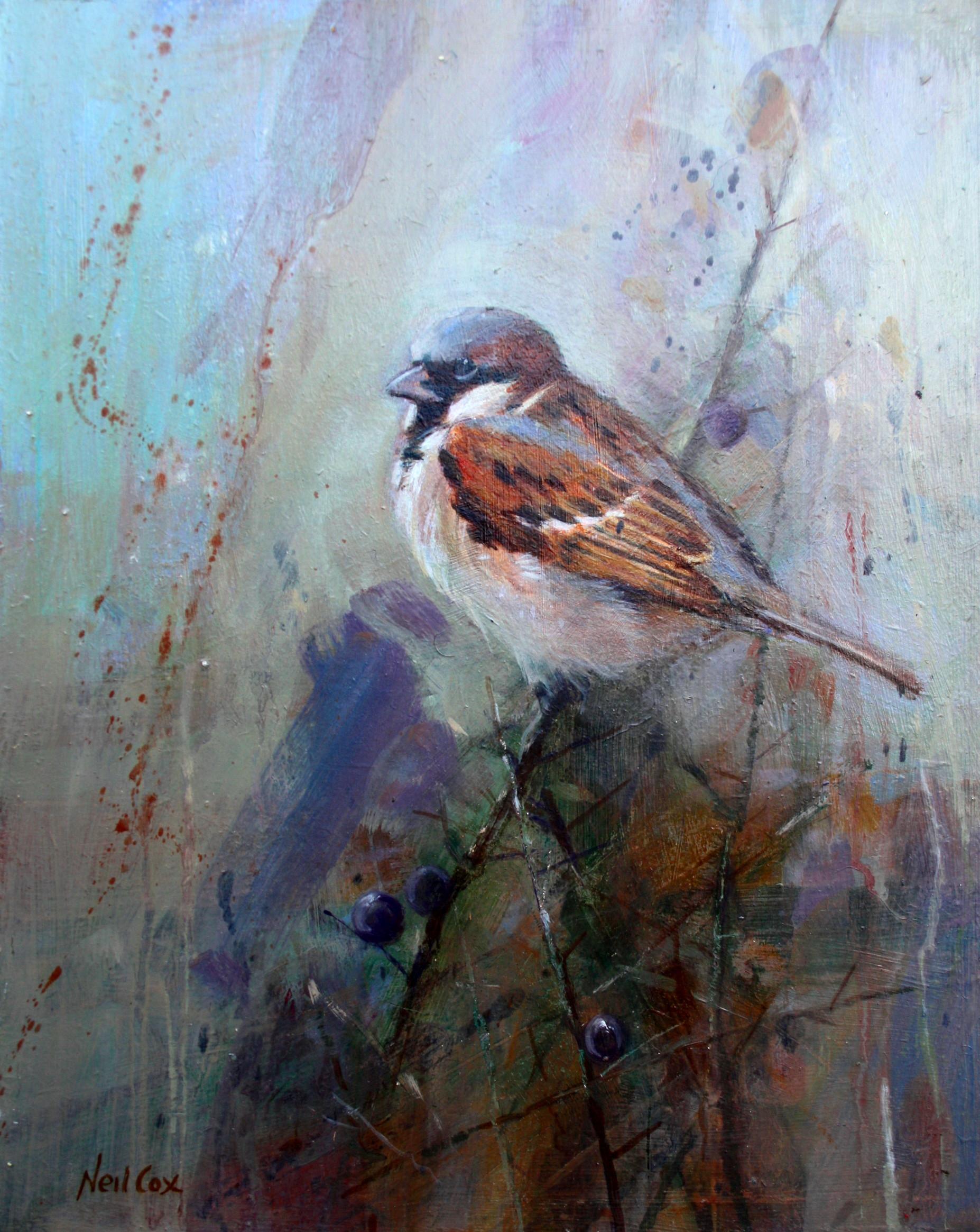 Cock Sparrow Study