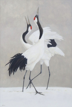 The Dance - Red Crowned Cranes