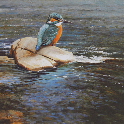 Kingfisher 25 x 25 cm