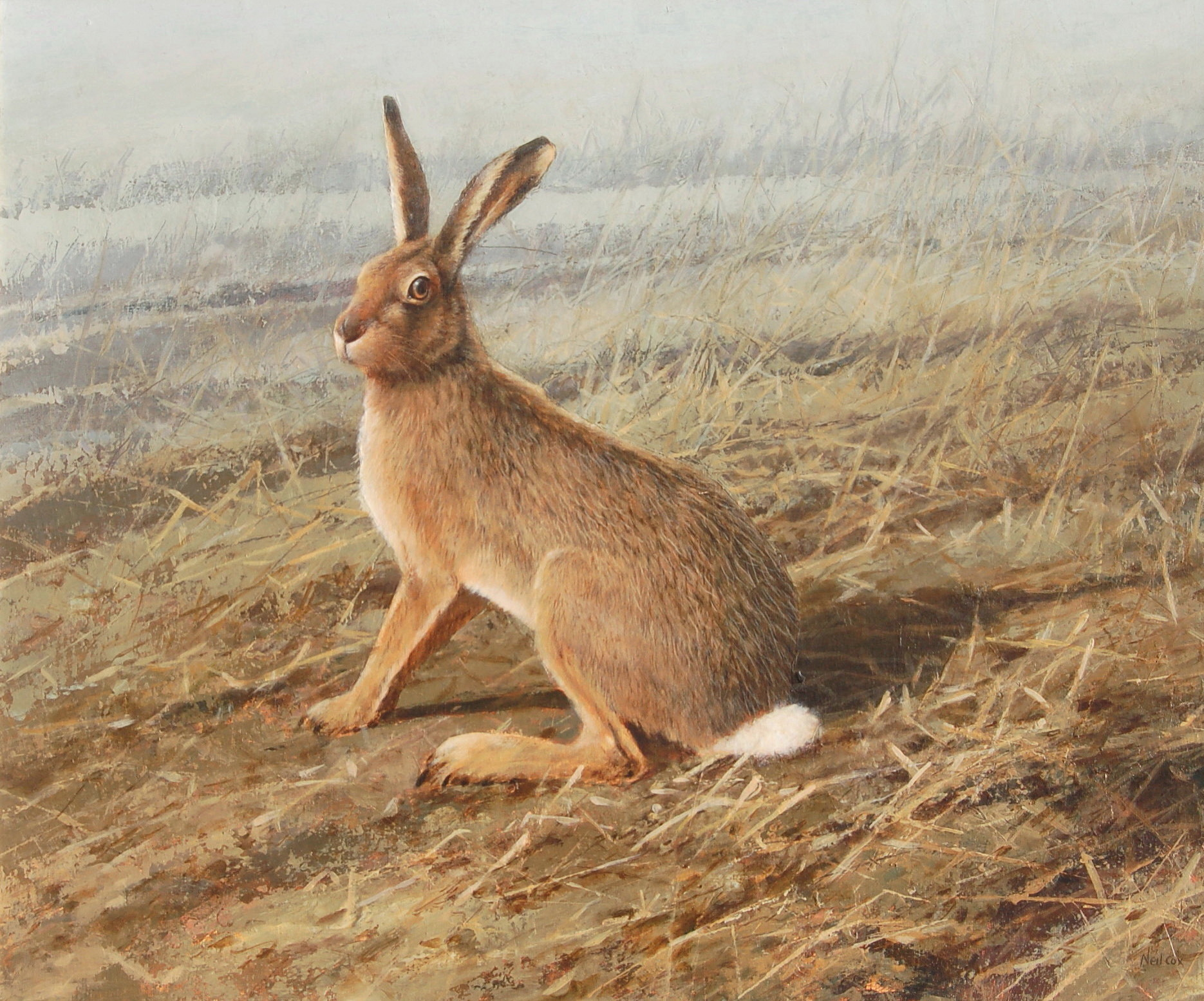 The Stubble Field, Brown Hare