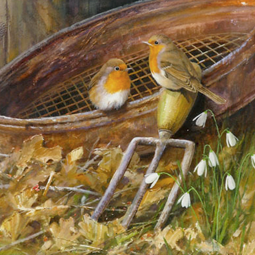 'The Gardener's Friend' -  Robins 24 x 24cm