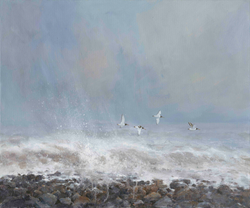 February Storms, Oyster Catchers