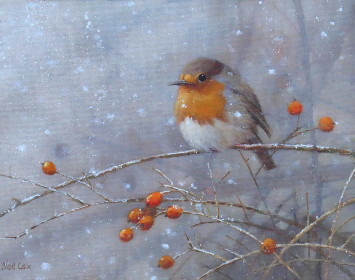 Snow Flurry, Robin