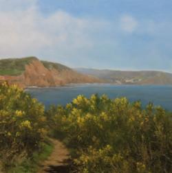 Coastal Path towards Sidmouth