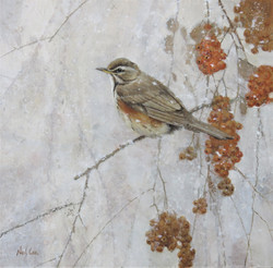 Winter Landscape with Redwing