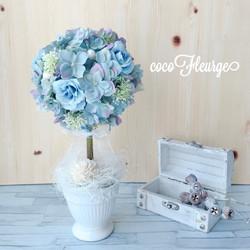 ブルー紫陽花のトピアリー