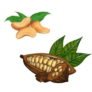 Cacao Cashew