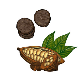 Cacao Biscuits