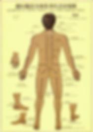Centro de salud Integral, Medicina Complementaria, Medicina Alternativa, Terapias Alternativas, Osteopatía Visceral, Osteopatía Estructural, Osteopatía Craneal, Quiropráxia, Naturopatía, Barros, Fangos, Hidroterapia, Acupuntura, Medicina Tradicional China, Auriculoterapia, Moxa,  Shiatsu, Reflexología vertebral, Iridio logia, Alimentación, Nutrición, Masaje, Quiromasaje, Drenaje Linfático Manual, Hidroterapia de colon, Técnica Neuro-Conectiva, Reflexología Podal, .Dolores intensos de espalda, Hernias Discales, Dolores en Cervicales, Dolores en Lumbares, Pubalgias, Cifosis, Lordosis de Cervicales, Lordosis Lumbares, Ciáticas, Cervicobraquialgías, Torticolis, Dolor de Trapecios, Artritis, Artrosis, Desgaste, Algias Neuralgias, Reuma, Esguinces de Tobillo, Esguinces de Rodilla