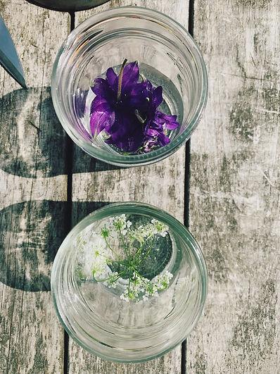 Flower Essences.jpg