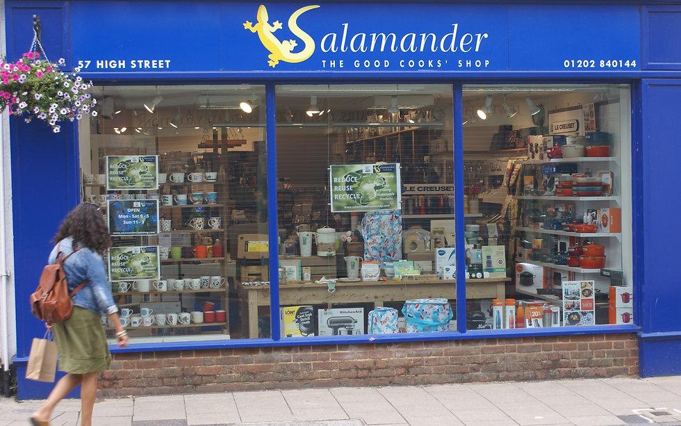 salamander outside Aug 21.jpg