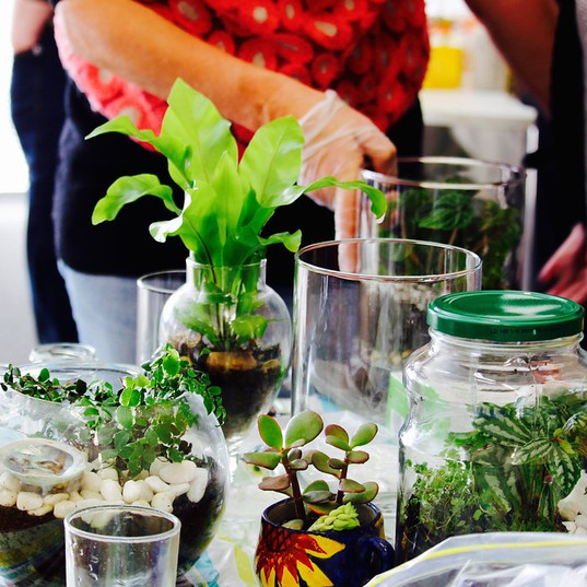 Opportunity to make your own terrarium