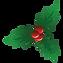 feuilles-de-houx--removebg-preview_edite