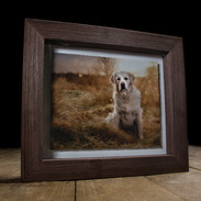 Carrie Southerton Dog Photography -Fine Art Float frame