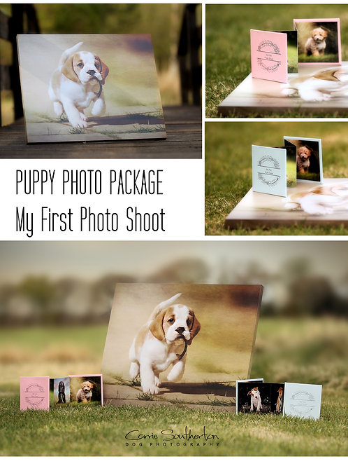 PUPPY PHOTO PACKAGE - My first photo shoot    (includes Canvas)