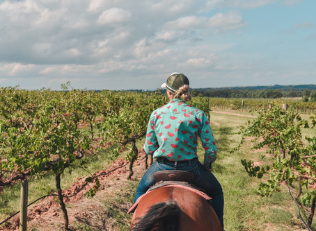 Giddy Up In The Hunter Valley!