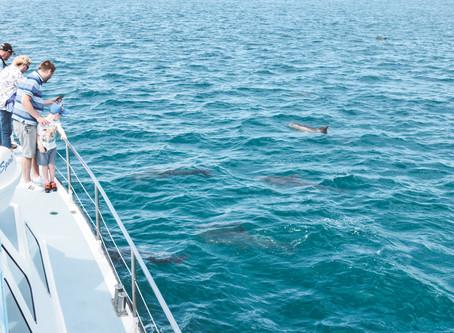 Splashing And Sliding In Nelson Bay!