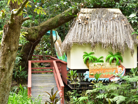 Meeting Fiji's Wildlife
